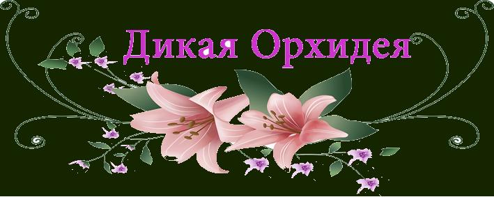 """Студия красоты """"Дикая Орхидея"""""""